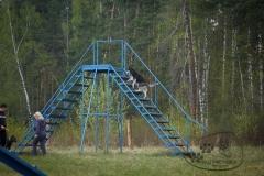 bkcf.ru-25