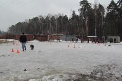 bkcf.ru-8538