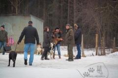 bkcf.ru-8545
