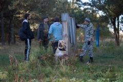 bkcf.ru-9842