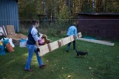 bkcf.ru-9970